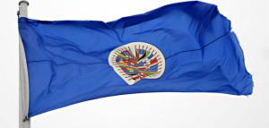 Bandera-de-la-OEA-02-702x336